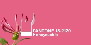 Pantone Honeysuckle | Pink | Blog White Linen Interiors Miami
