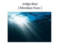 Color Inspiration Indigo Blue, Interior Design Miami
