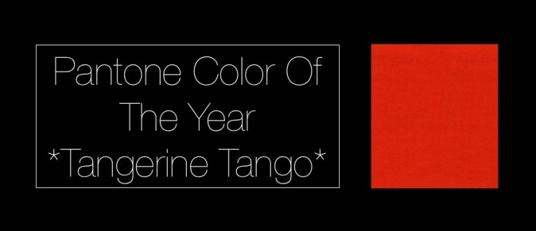 Image Tangerine Tango Pantone 2012 Color of the Year