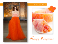 Tangerine Tango color inspiration home decor + fashion