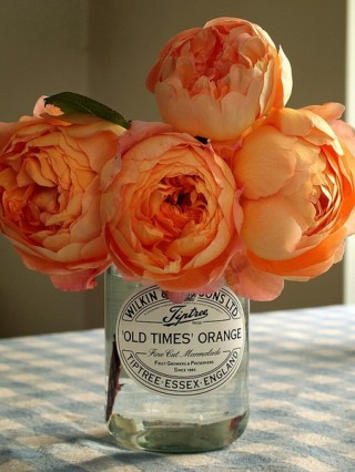 Casual but pretty peach peonies Pretty Flowers