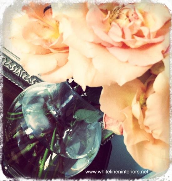 Soft Peach Hues
